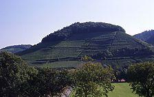 Castellberg, Historischer Terrassenweinberg bei Ballrechten-Dottingen / Castellberg, Historischer Weinberg in 79282 Ballrechten-Dottingen