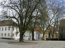 Konstanz, Münsterplatz 11/11a, ehemaliger Domherrenhof. Ansicht von Südwesten. (Löbbecke 2008) / Ehem. Domherrenhof in 78462 Konstanz