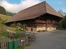 Falkenhof / Falkenhof in 77793 Gutach (Schwarzwaldbahn) (03.07.2009 - SFLM)