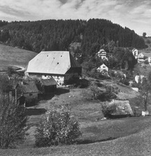 Gesamtansicht (1970) / Hasenbauernhof in 78730 Lauterbach, Hasenhof (Bildindex Foto Marburg: LDA Tübingen, 9108)