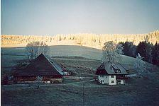talseitiger Blick auf den Benitzenhof / Benitzenhof in 79874 Breitnau, Siedelbach (www3.toubiz.de)