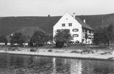Gesamtansicht / Rebgut Haltnau in 88709 Meersburg (01.01.1972 - Bildindex Foto Marburg: LDA TÜ, Foto Rettich 430/7)