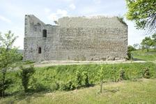 Ostansicht. / Ruine Altsachsenheim in 74343 Sachsenheim, Egartenhof (15.05.2013 - M. Hermann)